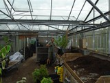 Sandy Lane Plant Nusery Melling